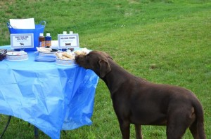 Boy's Best Friend Dog Party via Kara's Party Ideas | Kara'sPartyIdeas.com #Puppy #PartyIdeas #Supplies (4)