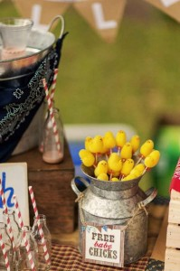 Farm Themed Birthday Party via Kara's Party Ideas | Kara'sPartyIdeas.com #LittleFarmer #Barnyard #FarmParty #Ideas #Supplies (9)