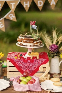 Farm Themed Birthday Party via Kara's Party Ideas | Kara'sPartyIdeas.com #LittleFarmer #Barnyard #FarmParty #Ideas #Supplies (16)