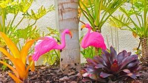 Flamingo Themed Pool Party via Kara's Party Ideas | Kara'sPartyIdeas.com #Summer #PoolParty #Party #Ideas #Supplies (8)
