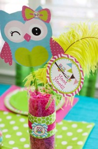 Look Whoo's One Owl Party with So Many Darling Ideas via Kara's Party Ideas KarasPartyIdeas.com #HootOwl #Party #Ideas #Supplies (12)