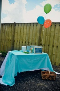 Peach Stand 2nd Birthday Party with DARLING IDEAS via Kara's Party Ideas | Kara'sPartyIdeas.com #Peaches #Harvesting #Summer #PartyIdeas #Supplies (13)