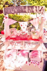 Shirley Temple Inspired 2nd Birthday Party with REALLY CUTE IDEAS via Kara's Party Ideas | KarasPartyIdeas.com #ShirleyTemple #AnimalCrackers #GoodShipLollipop #Party #Ideas #Supplies (63)