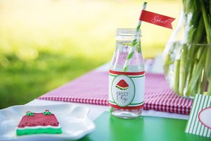 Watermelon Picnic Party with REALLY CUTE Ideas via Kara's Party Ideas | Kara'sPartyIdeas.com #Summer #Picnic #Party #Ideas #Supplies (25)