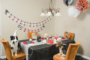 Doggy Birthday Party + For Dogs with Lots of Fun Ideas via Kara's Party Ideas | KarasPartyIdeas.com #ADogsBirthdayParty #DogParty #PartyIdeas #Supplies (21)