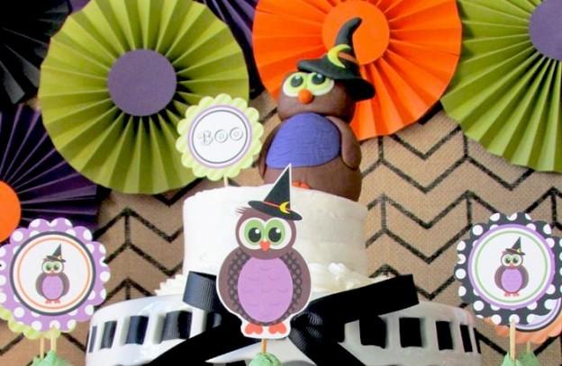 owl-41