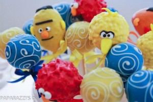 Sesame Street Themed 3rd Birthday Party with Lots of Cute Ideas via Kara's Party Ideas | KarasPartyIdeas.com #SesameStreetParty #Party #Ideas #Supplies (13)