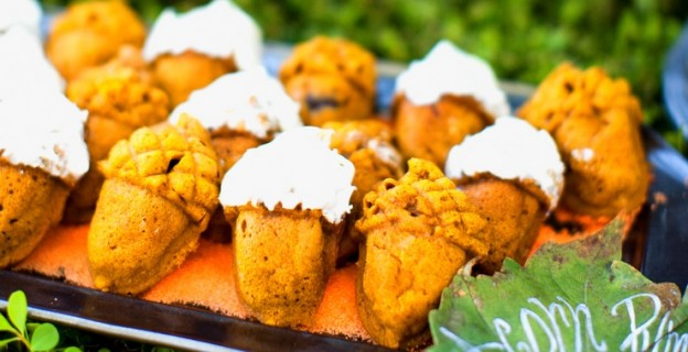 Acorn pumpkin cakelets cake recipe