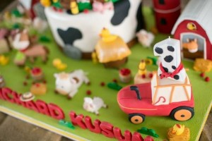 Barnyard Party with Full of Ideas via Kara's Party Ideas | KarasPartyIdeas.com #BarnyardParty #FarmParty #PartyIdeas #Supplies (7)