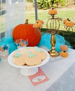 Vintage Cinderella Pumpkin Princess Party with Such Cute Ideas via Kara's Party Ideas | KarasPartyIdeas.com #FallParty #CinderellaParty #PumpkinParty #PartyIdeas #Supplies (3)