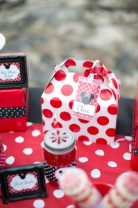 Minnie Mouse Polka Dot Picnic with Lots of Cute Ideas via Kara's Party Ideas | KarasPartyIdeas.com #MinnieMouse #PartyIdeas #Supplies (7)