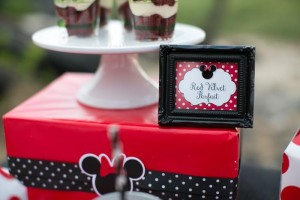 Minnie Mouse Polka Dot Picnic with Lots of Cute Ideas via Kara's Party Ideas | KarasPartyIdeas.com #MinnieMouse #PartyIdeas #Supplies (3)