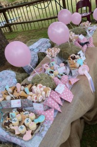 Vintage Pony Soiree with So Many Cute Ideas via Kara's Party Ideas KarasPartyIdeas.com #PonyParty #WesternParty #CowgirlParty #PonyCake #PartyIdeas #Supplies (4)