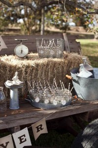 Milk and Cookies Gender Reveal Party with Such Cute Ideas via Kara's Party Ideas Kara Allen KarasPartyIdeas.com #RusticParty #GenderReveal #PartyIdeas #Supplies (12)