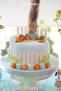 Peter Rabbit Themed 1st Birthday Party with Full of Really Cute Ideas via Kara's Party Ideas | KarasPartyIdeas.com #PeterRabbit #BeatrixPotter #PartyIdeas #Supplies (12)