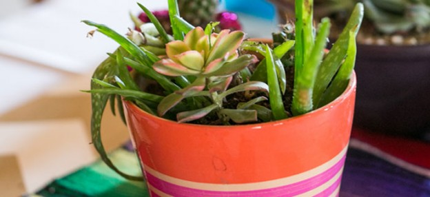 Cactus + Aztec themed Craft Night with Lots of Fun Ideas via Kara's Party Ideas! Full of decorating tips, cake, cupcakes, favors, games, and MORE! #cactusparty #aztec #aztecparty #craftnight #plants #partydecor #partystyling #partyplanning (2)