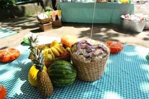 picnic8