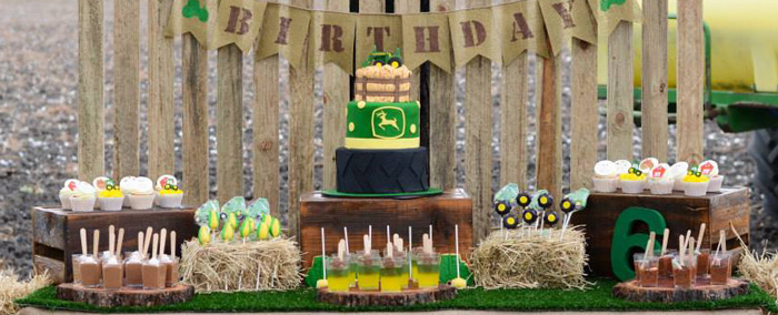 Kara S Party Ideas John Deere Farm Themed Birthday Party