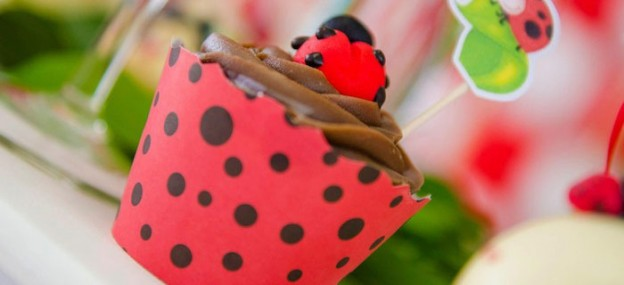 Ladybug themed birthday party via Kara's Party Ideas KarasPartyIdeas.com #ladybugparty #karaspartyideas #ladybugs #eventplanning (1)
