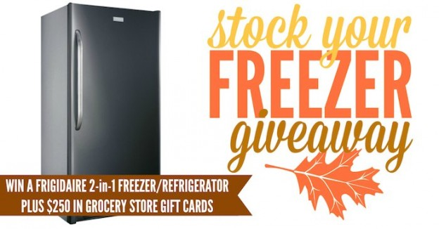 Freezer and Refrigerator giveaway! Plus Groceries! On Kara's Party Ideas KarasPartyIdeas.com