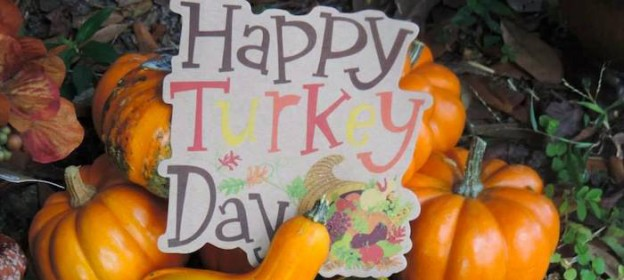 Happy Harvest Thanksgiving Dessert Table via Kara's Party Ideas KarasPartyIdeas.com Desserts, favors, printables, food, games, and more! #thanksgiving #thanksgivingparty #thanksgivingdessert #happyharvest #harvestparty #thanksgivingdesserttable (2)