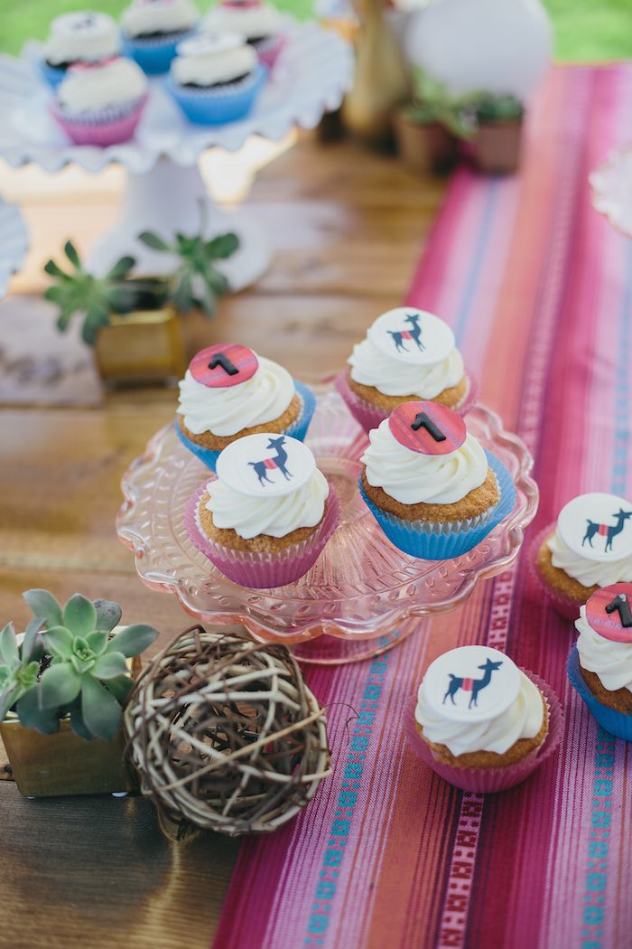 kara u0026 39 s party ideas fun  u0026 funky llama 1st birthday party