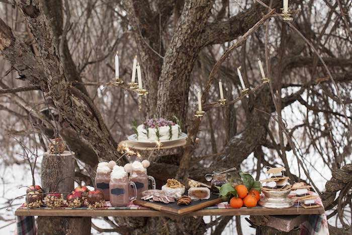 Kara S Party Ideas Rustic Winter Wonderland Outdoor Party