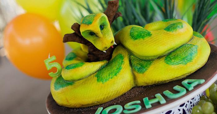 Kara S Party Ideas Snake Reptile Birthday Party