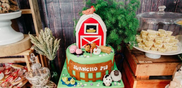 Rustic Barnyard Birthday Party via Kara's Party Ideas KarasPartyIdeas.com (1)