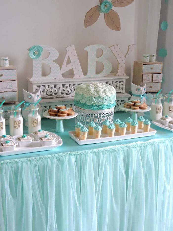 Turquoise Owl Welcome Home Baby Party Via Kara S Party Ideas Karaspartyideas Com