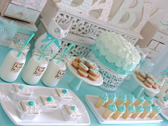 Kara 39 s party ideas turquoise owl welcome home baby party for Baby shower owl decoration ideas
