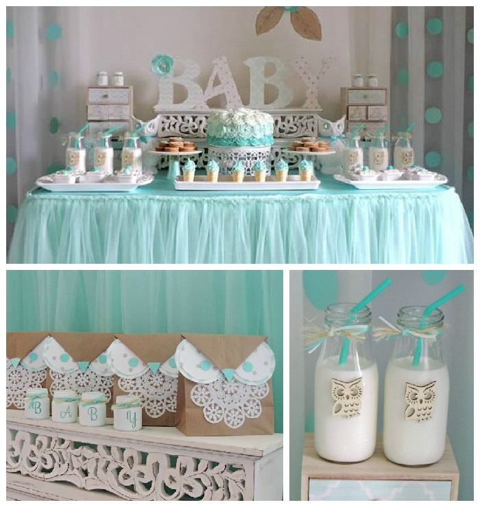 Kara 39 s party ideas turquoise owl welcome home baby party - Decoration baby shower garcon ...