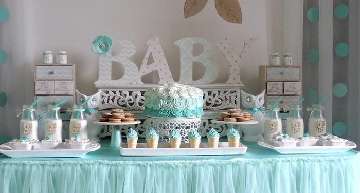 "Kara's Party Ideas Turquoise Owl ""Welcome Home Baby"" Party"