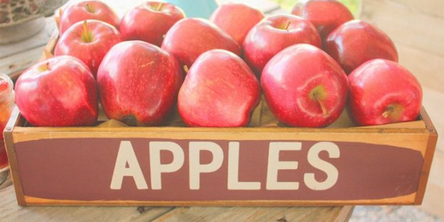 Apples from a Farmers Market Birthday Party via Kara's Party Ideas | KarasPartyIdeas.com (2)