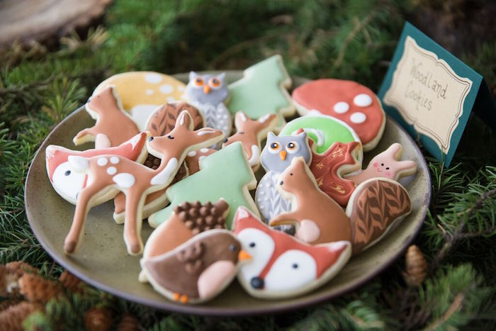 WOODLAND, OUTDOOR CAKES & COOKIES FOR YOUR WOODLAND BABY SHOWER OR BIRTHDAY PARTY