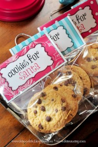 Cookies for Santa from a Retro Playful Christmas Party via Kara's Party Ideas | KarasPartyIdeas.com (15)