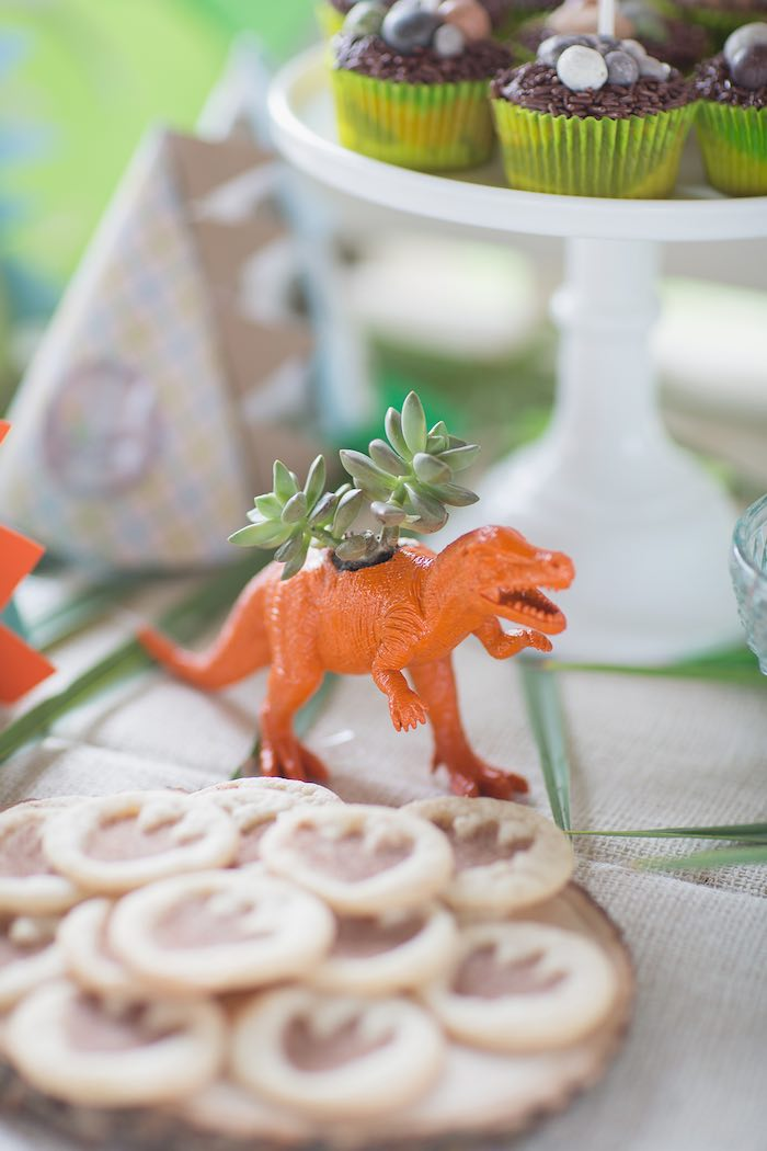 Succulent Dinosaur Arrangement from a Modern Dinosaur Birthday Party via Kara's Party Ideas KarasPartyIdeas.com (24)