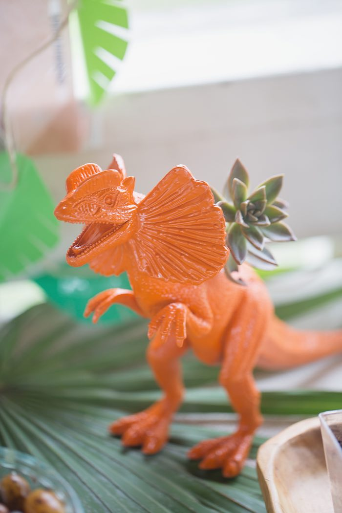 Dinosaur Succulent Planter from a Modern Dinosaur Birthday Party via Kara's Party Ideas KarasPartyIdeas.com (21)