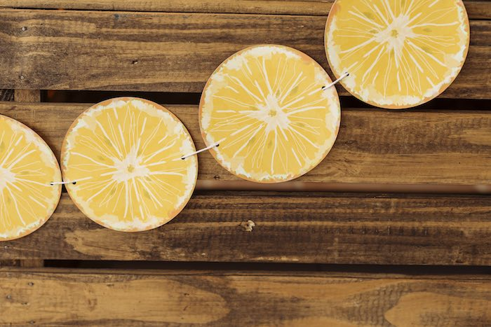 Lemon Slice Banner from a Fruit Stand Birthday Party via Kara's Party Ideas | KarasPartyIdeas.com (16)