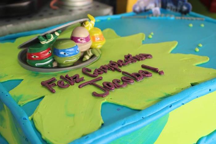 Cake from a Teenage Mutant Ninja Turtles Party via Kara's Party Ideas | KarasPartyIdeas.com (10)