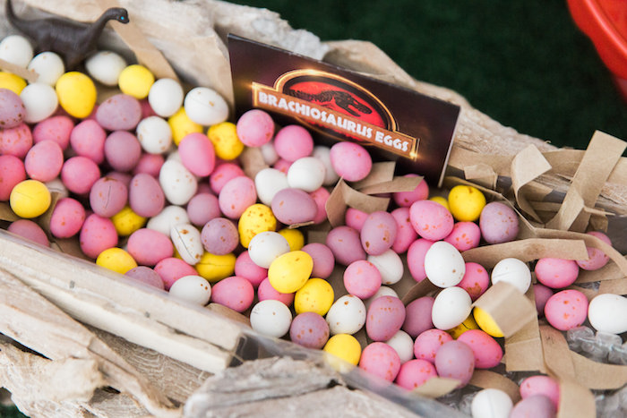 Candy Dinosaur Eggs from a Jurassic Park Dinosaur Birthday Party via Kara's Party Ideas | The Place for All Things Party! KarasPartyIdeas.com (23)