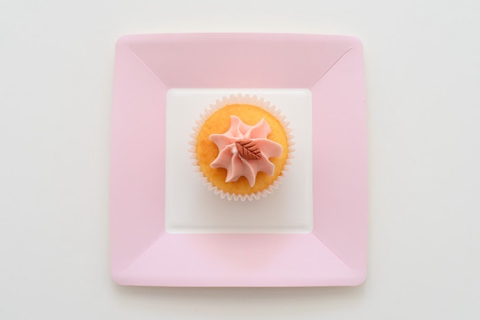 Plate + Cupcake from an Apple of my Eye Themed Birthday Party via Kara's Party Ideas |KarasPartyIdeas.com (15)