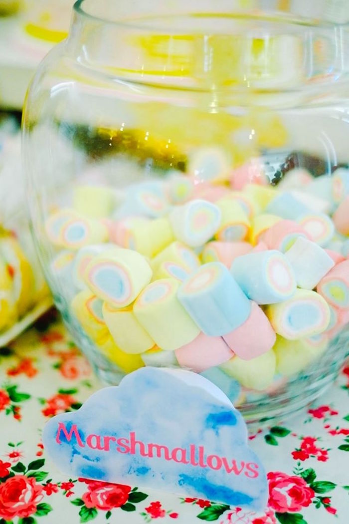 Mini Marshmallows from a Care Bears Themed Birthday Party via Kara's Party Ideas KarasPartyIdeas.com (45)