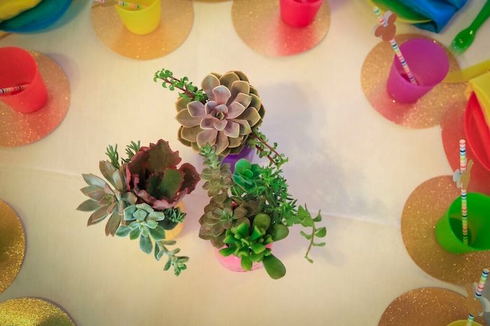 Succulents from a Colorful Geometric Mickey Mouse Birthday Party via Kara's Party Ideas KarasPartyIdeas.com (16)