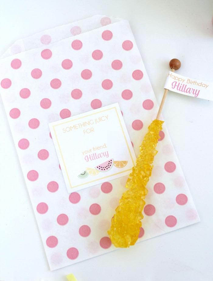 Mini Favor Sack from a Fruity Lemonade Stand Birthday Party via Kara's Party Ideas | KarasPartyIdeas.com (45)