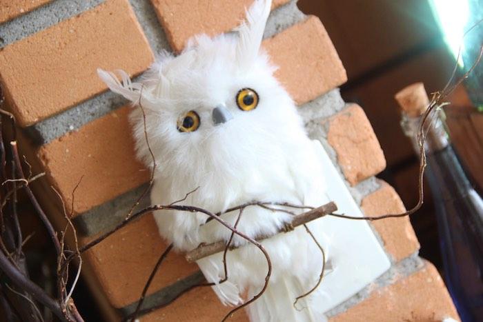 Plush Owl + Hedwig from a Harry Potter Birthday Party via Kara's Party Ideas | KarasPartyIdeas.com (19)