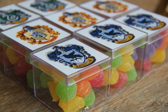 Favor Boxes from a Harry Potter Birthday Party via Kara's Party Ideas | KarasPartyIdeas.com (42)