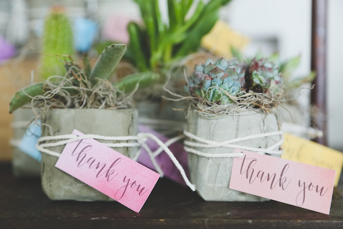 Succulent Plant Favors Stay Wild My Child Boho Baby Shower via Kara's Party Ideas | The Place for All Things Party! KarasPartyIdeas.com (31)