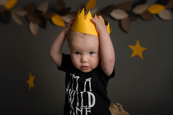 "Little Boy from a ""Wild One"" Where the Wild Things Are Cake Smash + 1st Birthday via Kara's Party Ideas - KarasPartyIdeas.com (26)"
