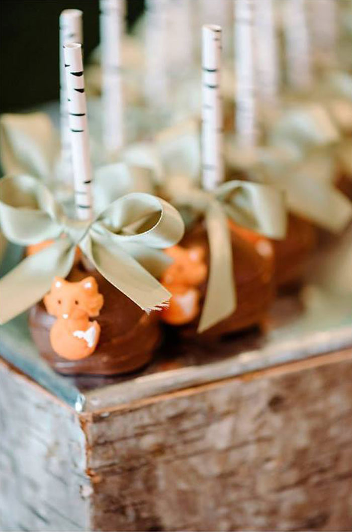 Cake Pops from an Enchanted Woodland Forest Birthday Party via Kara's Party Ideas | KarasPartyIdeas.com - The Place for All Things Party! (24)